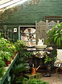 Potted plants, wash basin on chest of drawers and screen against green-painted brick wall in greenhouse