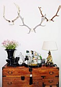 Mini bar on antique chest of drawers below hunting trophies on wall