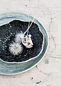 Thistles dipped in white paint and dried anemone flower in rustic dish on wooden surface