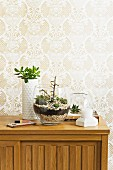 Glass bowl planted with succulents on wooden sideboard arranged against floral, beige patterned wallpaper