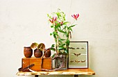 Glory lily (Gloriosa superba) in square planter, ceramic beakers and collection of butterflies on wooden table