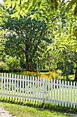 White garden fence in park