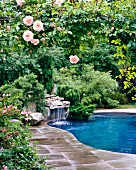 Pool with waterfall and rose garden