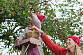 Mother and daughter on ladder picking apples