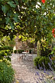 Summer atmosphere in idyllic seating area outside Italian holiday home