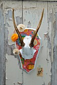 Antlers painted white on shield covered in Chinese wrapping paper, garland of everlasting flowers and postage stamp on old wooden door with peeling paint