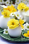 Eggshells used as miniature vases for wild tulips, primulas & saxifrage flowers