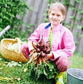 Girl carrying root vegetables, Sweden.