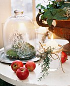 Lit candle with Christmas decorations next to apples and plants in various containers