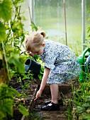Ein Mädchen gießt die Pflanzen im Gewächshaus
