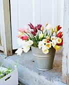 Colourful bouquet of tulips in zinc bucket on stone step of open exterior door