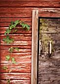 Part of log cabin