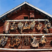 Reindeer meat hanging on exterior wall of wooden house to dry