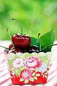 Cherries in cardboard punnet with floral pattern