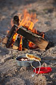 Soup in camping bowl next to open fire on beach