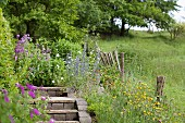 Steps in flowering garden in rural setting