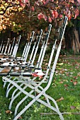 Row of garden chairs in autumnal garden