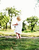 Toddler playing in meadow