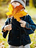 Kleines Mädchen versteckt Gesicht hinter Laubblatt