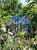 Greenhouse in summer garden