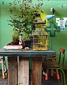 Large potted plants and rusty birdcage on rustic table against green wall