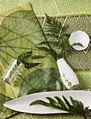 Arrangement aus liegender weißer Vase mit Farnblatt und weißen Porzellanschalen auf Stoffunterlage im Dschungel-Look