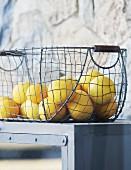 Zitronen in Vintage Drahtkorb auf grauem Küchenregal