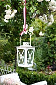 White garden lantern hanging from rose bush above garden bench