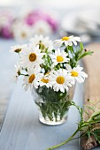 Posy of ox-eye daisies in drinking glass