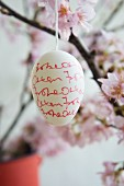 Easter egg decorated with handwriting hanging from blossoming cherry branch