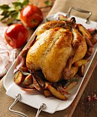 Whole Roast Chicken with Onion and Potato on a White Platter