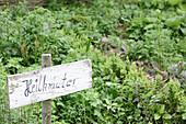Hand-written sign reading 'Heilkräuter' (medicinal herbs) in herb garden