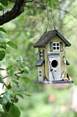 Bird nesting box hung from tree