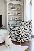 Crockery and ornaments on country-house shelving behind armchair with black and white floral upholstery and dog on long-pile rug