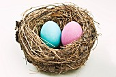 A pink and a blue egg in an empty nest on a white background