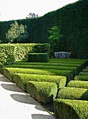 Topiary hedges & box bushes in garden complex