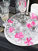 Glass dish of shot glasses, ice cubes and pink flowers