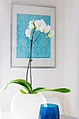 White orchid in spherical vase below framed fabric sample on wall
