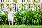 Caucasian girl exploring flowers in backyard
