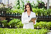 Scientist working in greenhouse