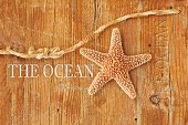 Dried starfish and piece of rope on wooden surface with lettering