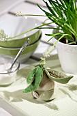 Eierwärmer mit gefilzten Zuckerschoten geschmückt auf zart grün-weiß kariertem Tischset