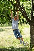 Junge mit selbstgenähtem Tiermotiv auf Shirt schaukelt an Ast eines Baumes im Garten