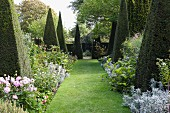Topiary box bushes and flowering beds lining lawn