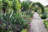 Blooming flower beds lining gravel path leading through climber covered arch in English garden