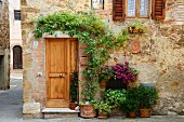 Planters of flowers on floor next to wooden front door below climber on wall of farmhouse in Italian village