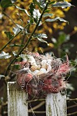 Birds' eggs and lamb ornament in Easter nest of spotted feathers on picket fence