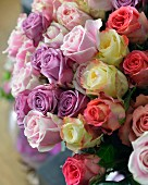 Roses of various colours