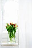 Glass vase of tulips on window sill