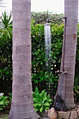 Vintage-style shower attached to palm tree trunk in front of hedge grown over fence in summer garden